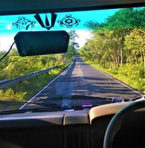 Exploring the Ghat Roads of Nallamalla Hills was Chilling yet Captivating...