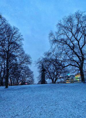 Beginning of Winter Oslo, NORWAY