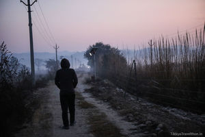 The Violet Sky and a Morning Walk