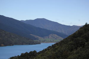 My Big Kiwi Adventure Log I: That Glorious Journey from Auckland to Marlborough Sounds