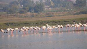 Bhigwan-a photographer's paradise