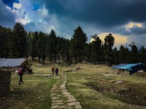Churdhar trek, himachal pradesh