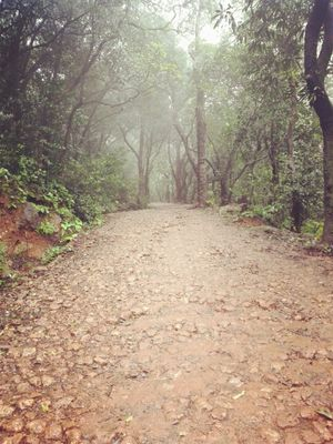 Matheran –  The place in your budget