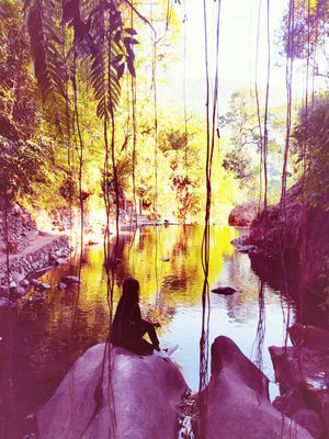 "Nature itself is ""A creator"" - Living Root Bridge"