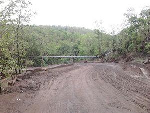 Trip to Forgotten Kingdom!!! Inside Ratapani Wildlife Sanctuary