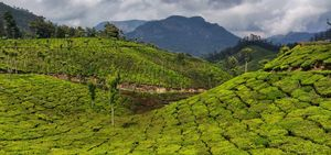9 days in God's Own Country - Kerala on a budget