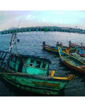 Major fishing ground for fishermen: Kashimedu, Chennai