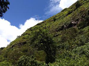 Tung Fort -The window to Lohgad,Visapur,Tikona & Korigad Fort