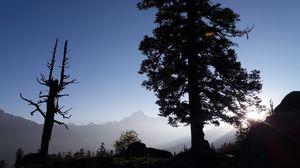 Kuari Pass trekking - A journey to spiritual wisdom