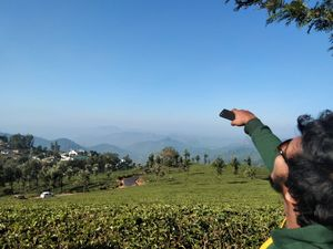 Exploring In Munnar Tea Plants ????