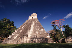 Tikal 1/undefined by Tripoto