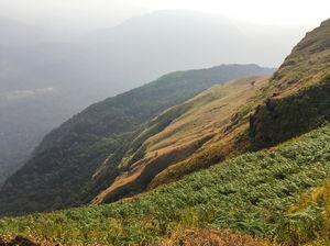 Trek to Kodachadri hills,Karnataka