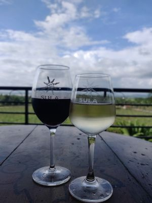 Grapes to glass - Sula Vineyards