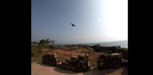 Fort Sindhudurg! #Fort #Sindhudurg #IncredibleIndia