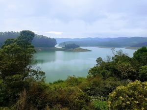 Journey to the secluded heaven- Destiny Farms, Ooty (Tamil Nadu, India)
