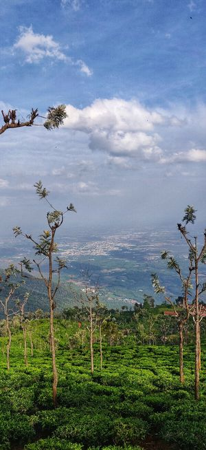 Coonoor.. Dont give this place a miss