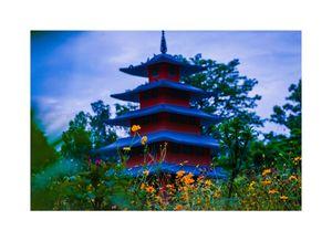 Japanese garden in Chandigarh.