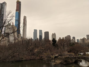 Central Park West 1/undefined by Tripoto