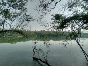 Rajiv gandhi zoological park, pune.