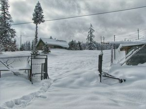 Gulmarg in Winters - An absolute paradise experience