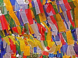 Romanticism unleashed at Darjeeling