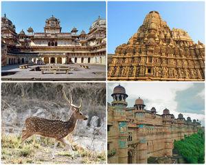 हिंदुस्तान के दिल का सफर: मध्य प्रदेश में ऐसे बिताएँ शानदार छुट्टियाँ