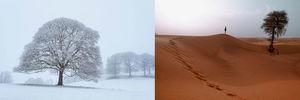 सबसे ऊँची, सबसे ठंडी, सबसे बेहतरीन: ये हैं भारत की सबसे अद्भुत जगहें
