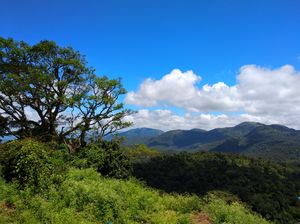 BR Hills, Karnataka - The journey & destination both are beautiful (1 day trip from Mysore) :)