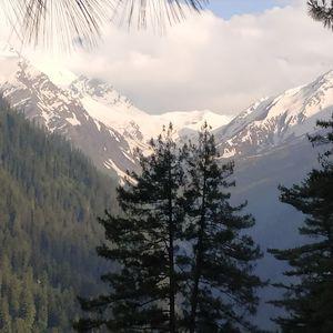 amazing valley tosh