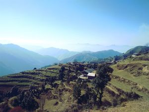 Sister of queen of hills 》Chakrata
