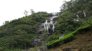 Munnar - Lush Green Hill - God's Abode - P2