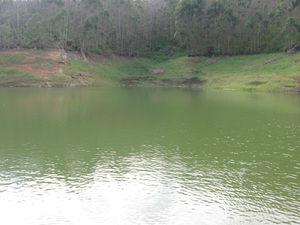 Munnar - Lush Green Hills - God's Abode - P6