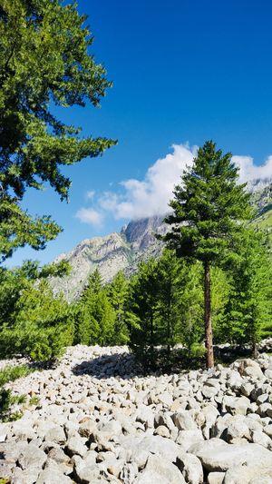 Hidden beauty of Himalayas