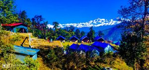Random plans are always the best one's- #Solotravel Sari village- Chopta- Tunganath #Uttrakhand