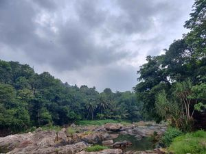 Serene, Sanguine and God's own Country ---Yes Yes Yes It's Kerala