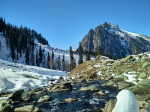 Meadow of Gold :- Sonamarg