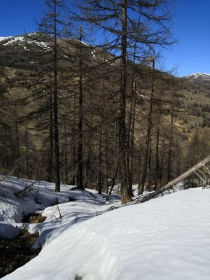 One day in Sestriere