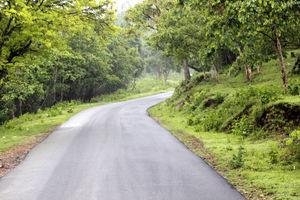 Weekend trip to Bandipur Tiger Reserve