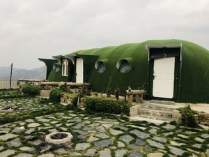 Green Shimla #colourgreen