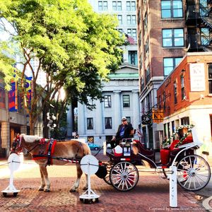 'Boston City' in a Day – A Walking Tour