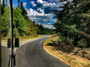 Rekong Peo To Shimla : View outside my window