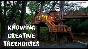 KNOWING CREATIVE TREEHOUSES