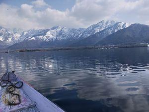 Dal lake (srinagar)