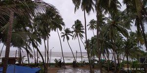 Malvan:Konkan's Own Miracle