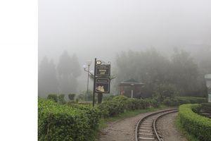 Places to visit in India-Darjeeling-Batasia loop,Ghum-SteamEngine Rail,Peace Pagoda & Gangamaya Park