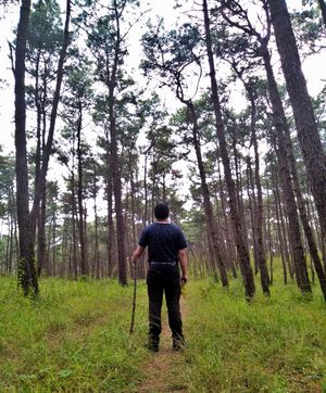 Trek and Trails in Shillong .