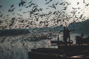 Bluish Yamuna Ghat || New Delhi||
