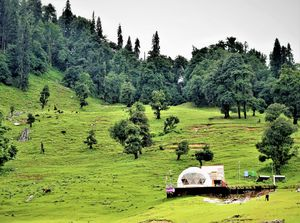 Monsoon magic - Chopta & Deoria tal !