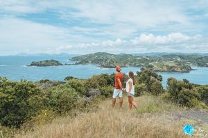 Tutukaka Coast The Anchorage 1/undefined by Tripoto