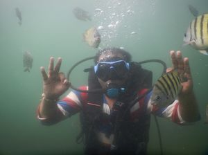 Tarkarli - Life under sea (scuba diving)